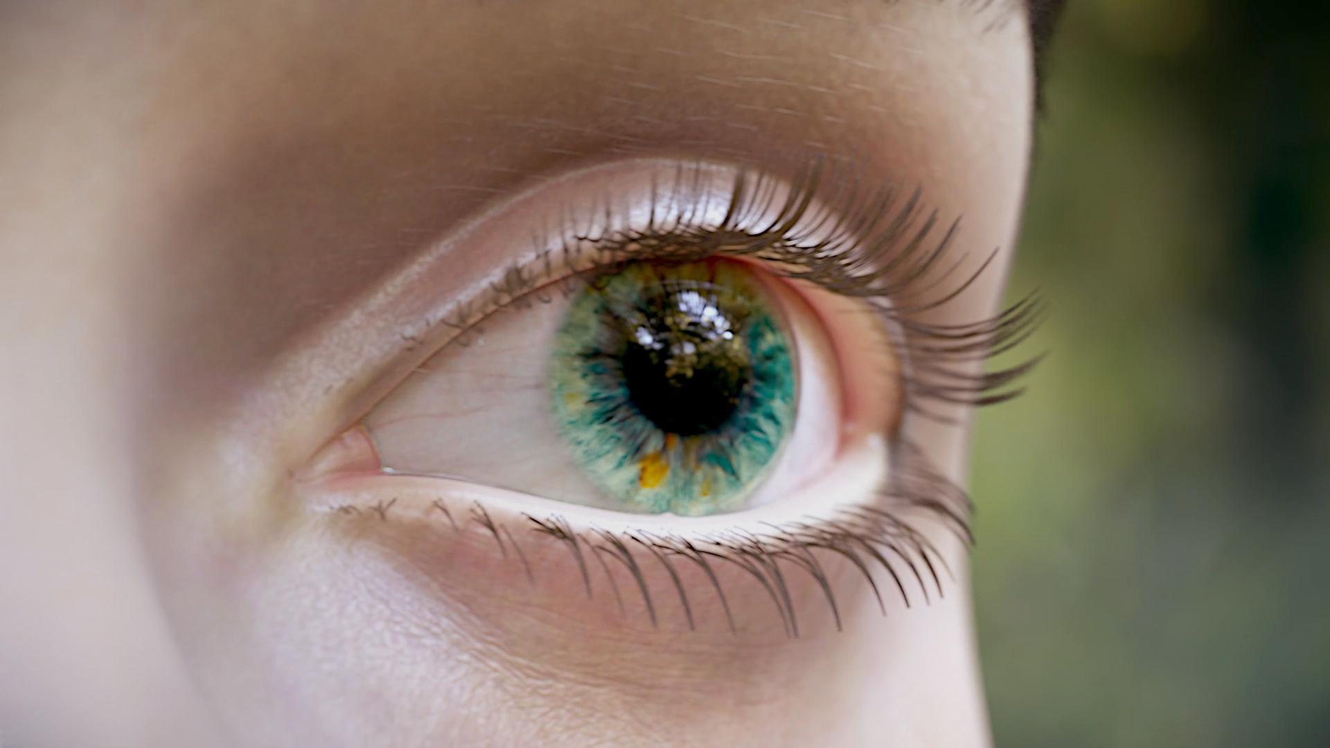 Eye Diabetes Inflammation Mechanism Of Action MoA Image